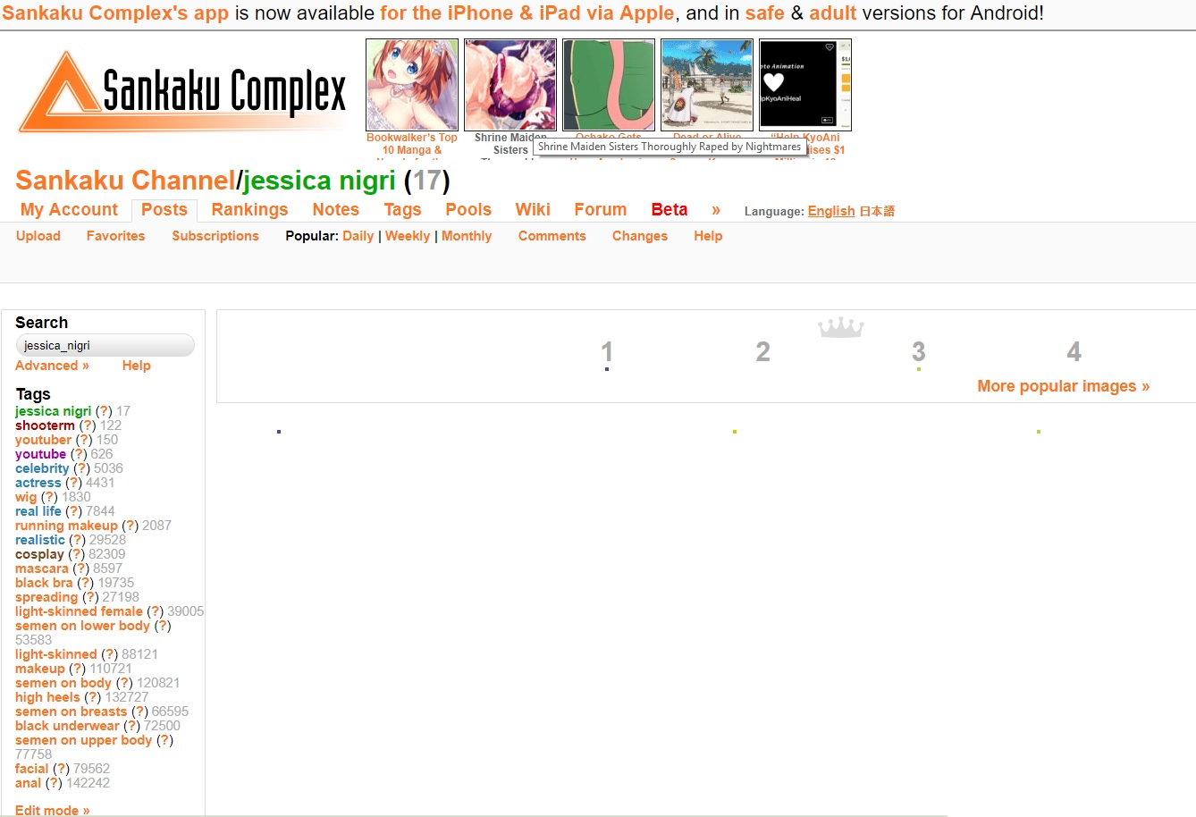 The Images Do Not Load Support Sankaku Complex